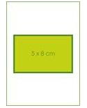 Pansement silicone CEREPLAS Cerederm 5X8 cm